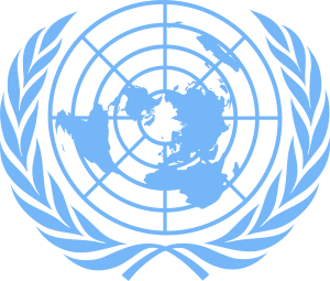 united-nations-311419